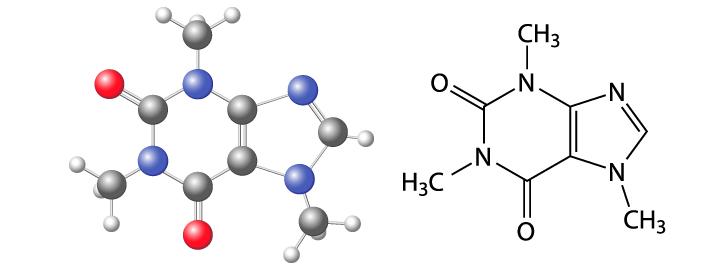 Proteine Palestra: Cosa Sapere?